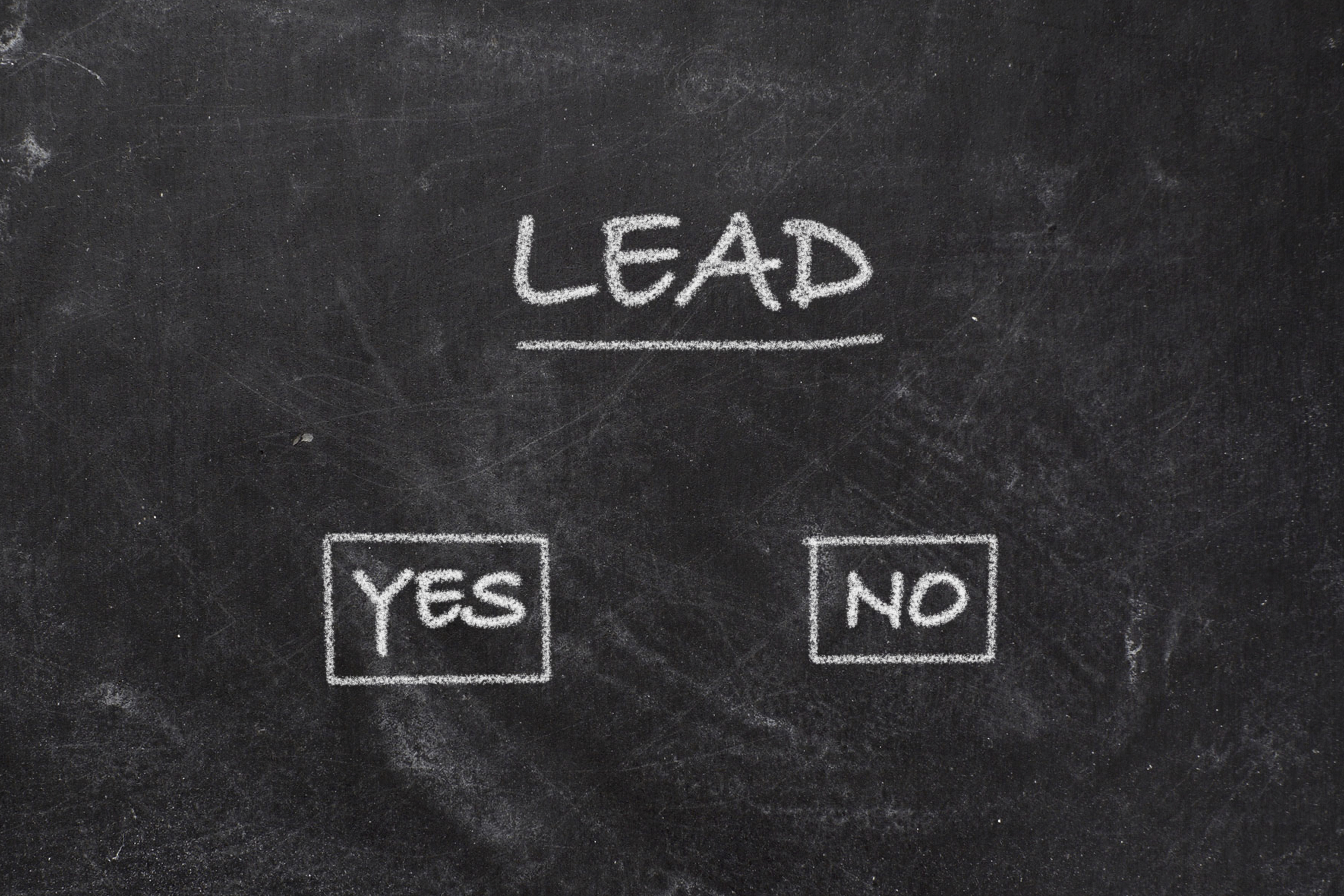 lead with yes or no checkboxes