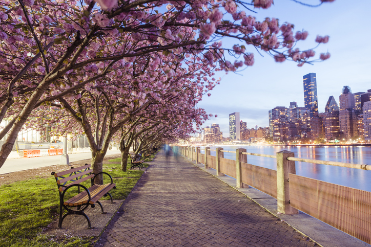 spring in the city